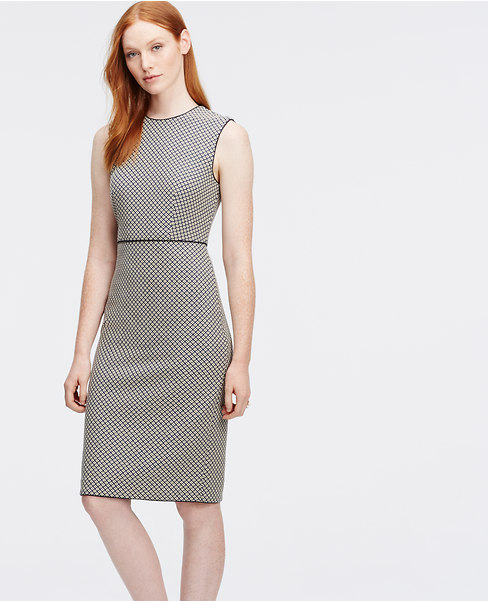 Sadie Dishes- Ann Taylor Sheath